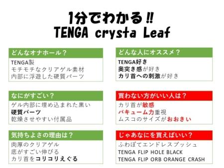 1分でわかるTENGA crysta Leaf