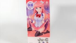 Ju-C4Uのパッケージ